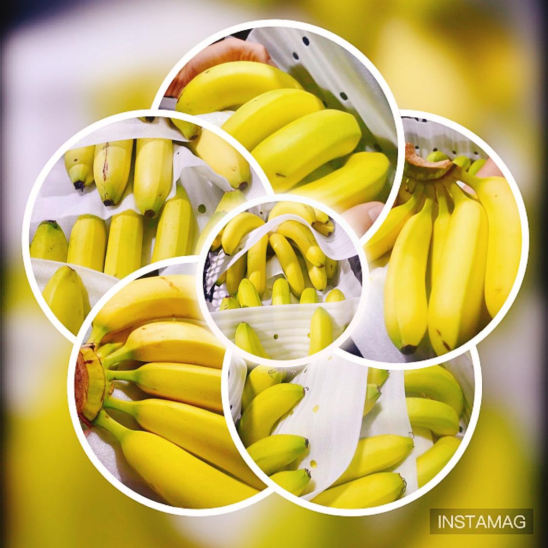 chuoi nen an bao nhieu trai moi ngay la tot nhat cavendish banana hinh anh